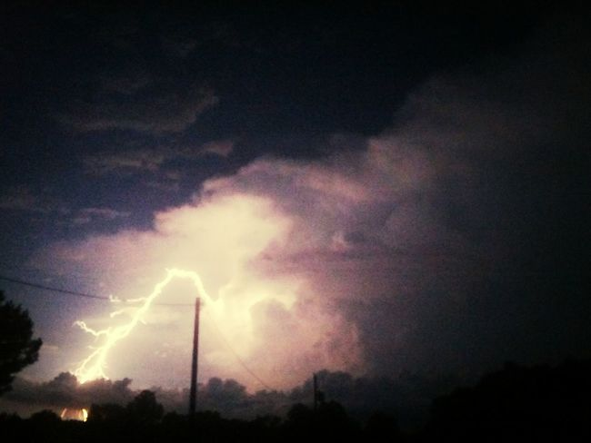 2014 Summer Storm, Reed©