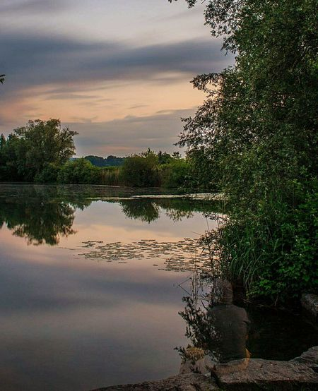 Relaxing Hanging Out Taking Photos Enjoying Nature Nature EyeEm Best Shots - Nature Reflection Landscape_Collection Clouds And Sky Experimental Ghostshot Ghost The Great Outdoors - 2016 EyeEm Awards EyeEm Nature Lover Check This Out Switzerland Frauenfeld Trees And Sky Clouds Long Exposure Sunset