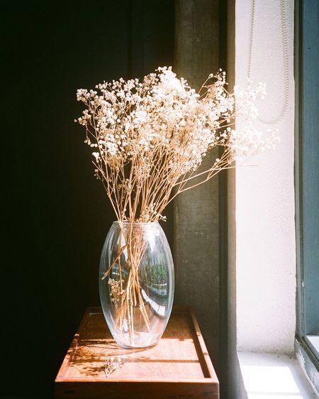 Flowers In Glass Vase On Sideboard By Window
