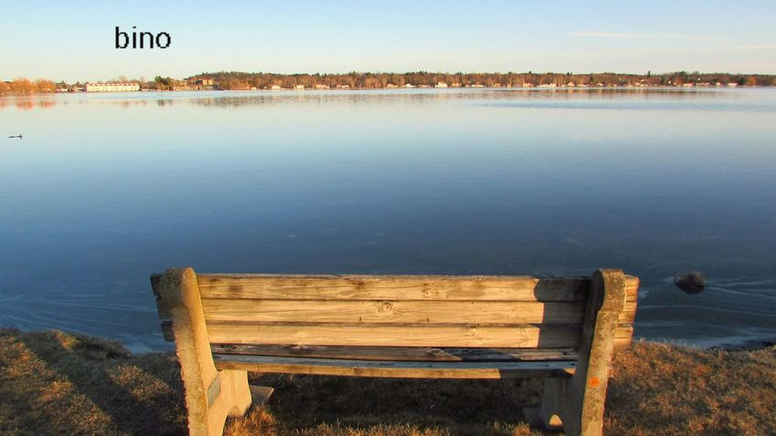 Shooting At Dusk Around The Lake Quiet Places Lone Bench Have A Seat & Relax Calm Waters Lake Cadillac Pure Michigan