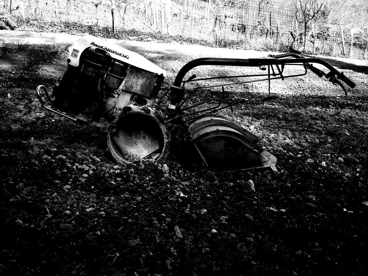 abandoned, damaged, obsolete, day, run-down, outdoors, no people, destruction, bad condition, grass, nature, close-up