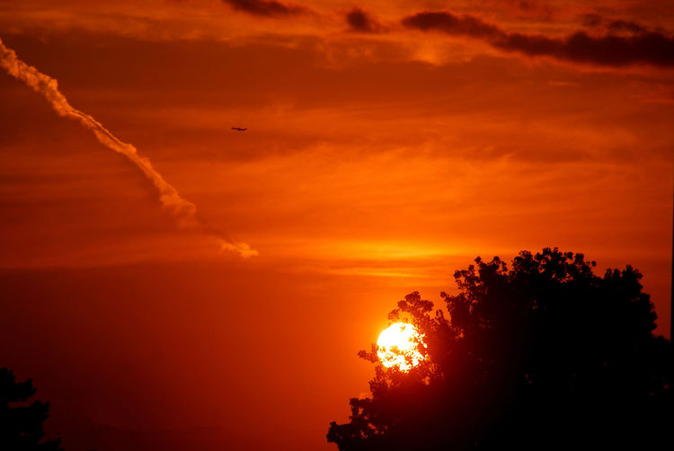 Crazy sunrise Sunset Sky Orange Color Beauty In Nature Scenics - Nature Cloud - Sky Tranquility Tranquil Scene Silhouette Nature No People Tree Idyllic Sun Plant Dramatic Sky Outdoors Sunlight Majestic Awe Orange Romantic Sky