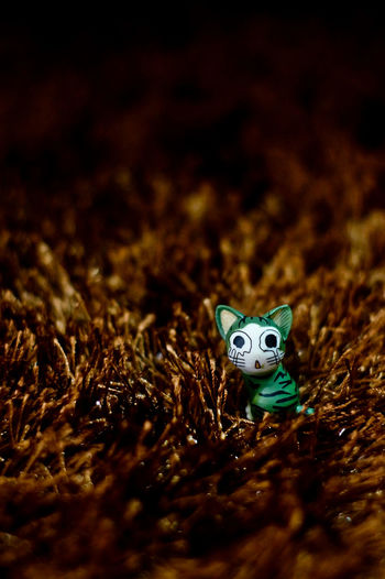 Alone Bootleg Childhood Crying Kitten Lost Toy Toyphotography