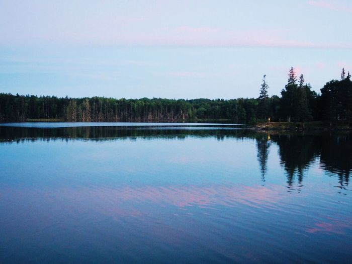 Sunset, Deer Isle Maine Deer Isle Water Tree Reflection Sky Lake Tranquility Tranquil Scene Scenics - Nature Beauty In Nature Cloud - Sky Non-urban Scene No People