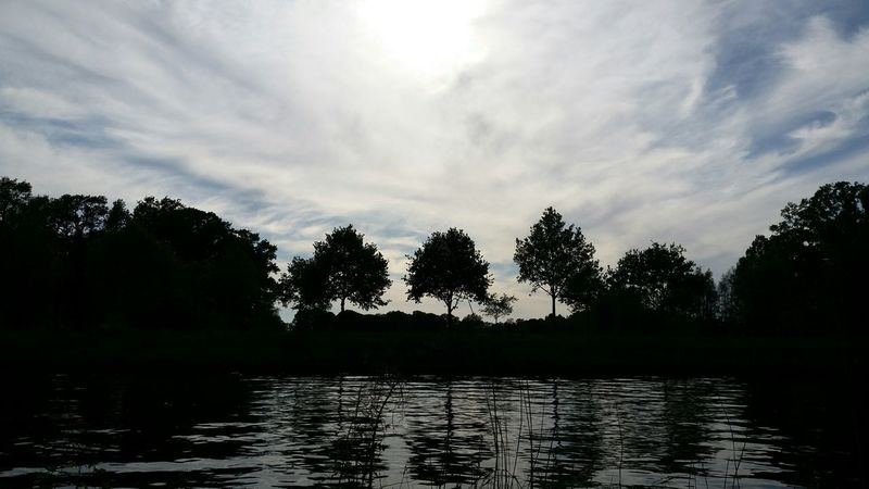 Trees along the Twenthekanaal(zijkanaal naar Almelo) ♡ Dutch Canals Tree_collection  Water_collection Nice View Artınmylife Open Edit For Everyone Landscape_photography ! T H E Purist (no Edit, No Filter) EyeEm Gallery Pure Photography