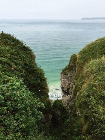 Irland sieht manchmal aus wie Costa Rica. Sea Northern Ireland Coast Way Passage Green Ocean Canyon Beauty In Nature Tranquility Tranquil Scene Seascape Nature Idyllic Travel Destinations Growth Journey Outdoors Peace And Quiet