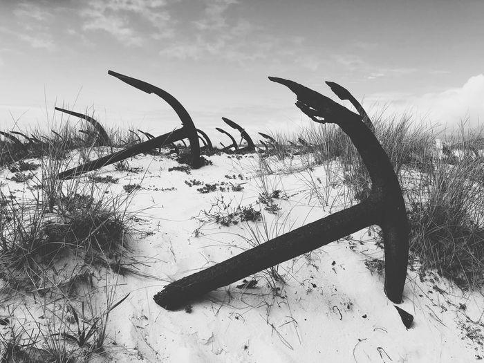 Anchor grave