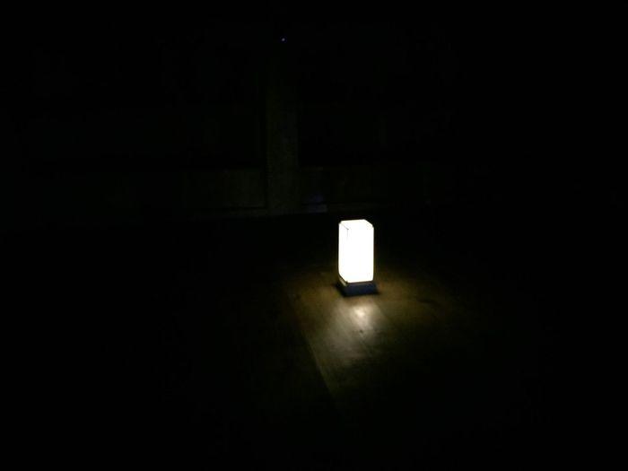Illuminated light bulbs in dark room