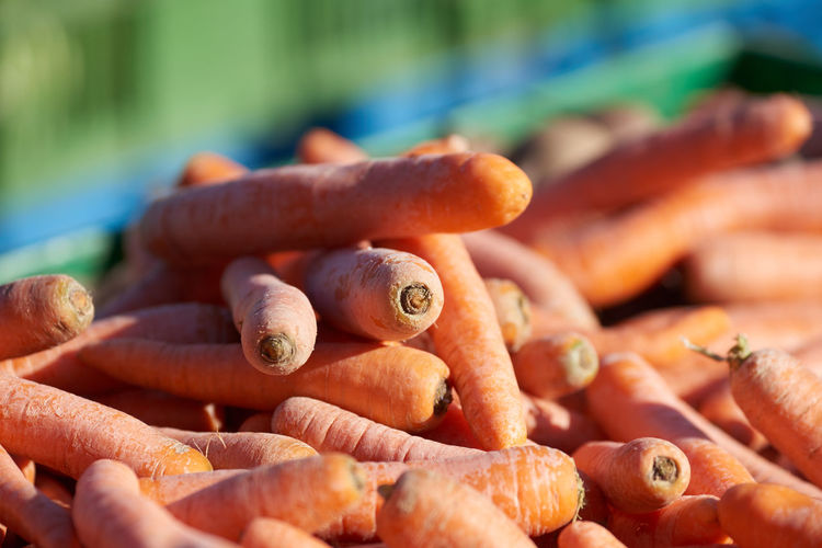 Close-up of carrots for sale at market stall