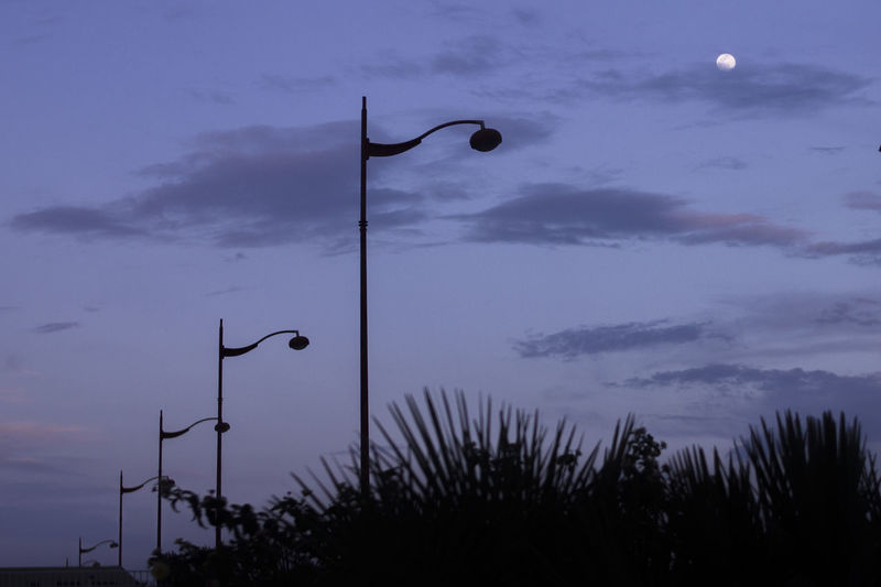 Sky Street Light Street Silhouette Lighting Equipment Cloud - Sky Dusk Nature Plant No People Tree Low Angle View Outdoors Beauty In Nature Moon Illuminated Sunset Technology Architecture Scenics - Nature Electricity  Light