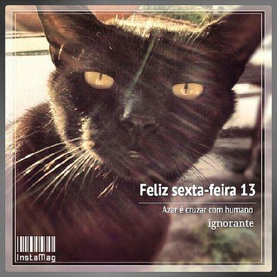 Esse é o meu gato preto, o Frederico. Tia sexta feira eu tenho medo. Mas meu medo não é dele. Meu medo e dele encontrar pessoas cruéis e ignorantes que ainda acredita que gato preto da azar! Sextafeira13 13 Friday GatoPreto blackcat friday13th 13th azar superstição