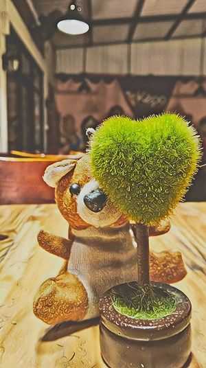 bear love trees sad Bear And Tree Sad & Lonely Sad Bear And Sadness Miniature Green Color Love Little Bear Plant Life First Eyeem Photo