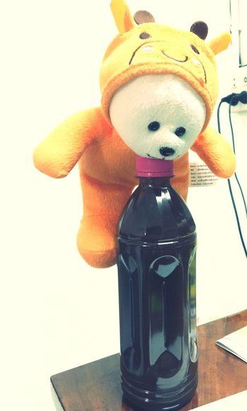 Teddy Bear Mocmoc again