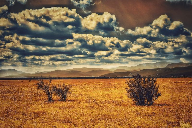 Melancholic Landscapes Enjoying Life Fields Of Gold Colour Of Life EyeEm Best Edits Landscape Mystical Atmosphere Cloud - Sky Global Photographer-Collection The Week On Eyem Showcase August Capture The Moment Austria Landscape_photography A Photo Like A Painting Home Is Where The Art Is Landscape Photography Wienerneustadt Clouds