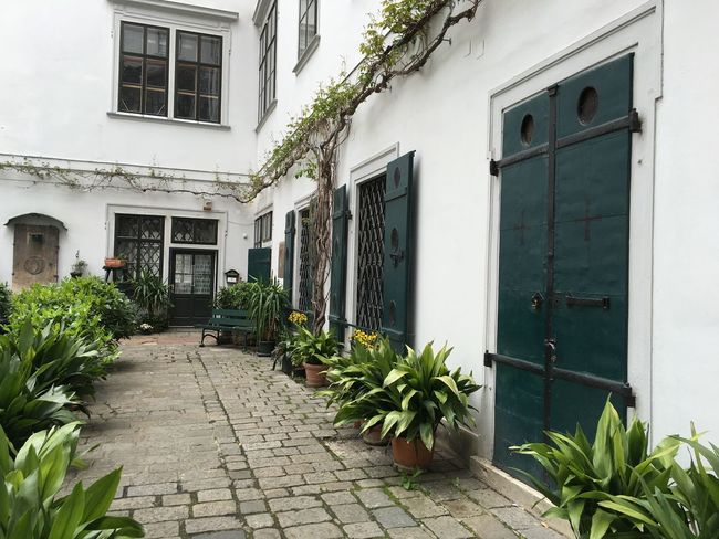 A courtyard in Vienna, Austria Architecture Building Exterior Built Structure Day Door Flower Growth House Nature No People Outdoors Plant Residential Building Window