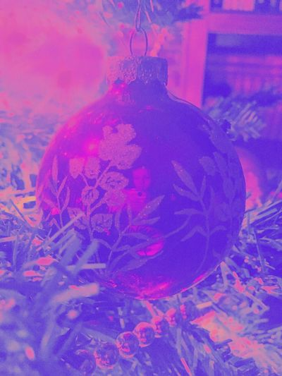 Close-up No People Indoors  Day Christmas Tree Christmas Decorations Christmas Ornament Christmas Lights Purple Distortia Ornaments Christmastime