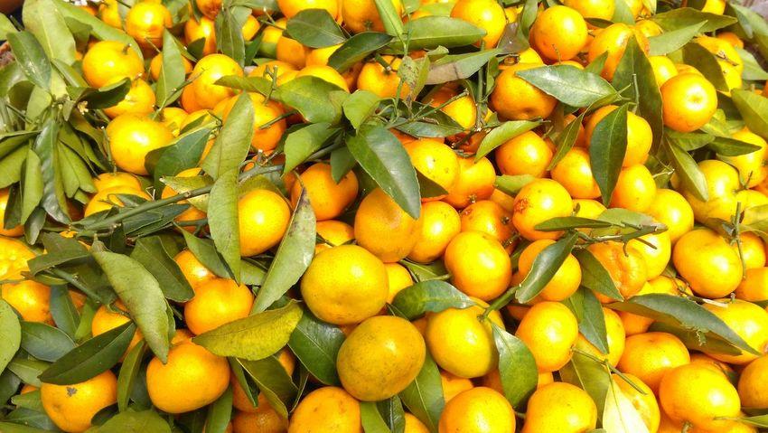 Fruit Close-up Yellow Large Group Of Objects Extreme Close Up Market Mandarins Fruitphotography