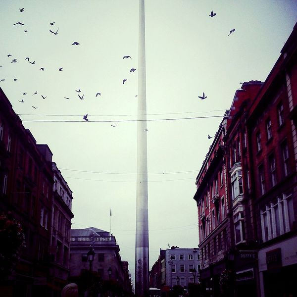 Traveling Home For The Holidays Flying City Building Exterior Bird No People Urban Skyline Outdoors Nature Cityscape Sky Architecture Day Drone  Dublin Ireland🍀 Irish City Travel Photography