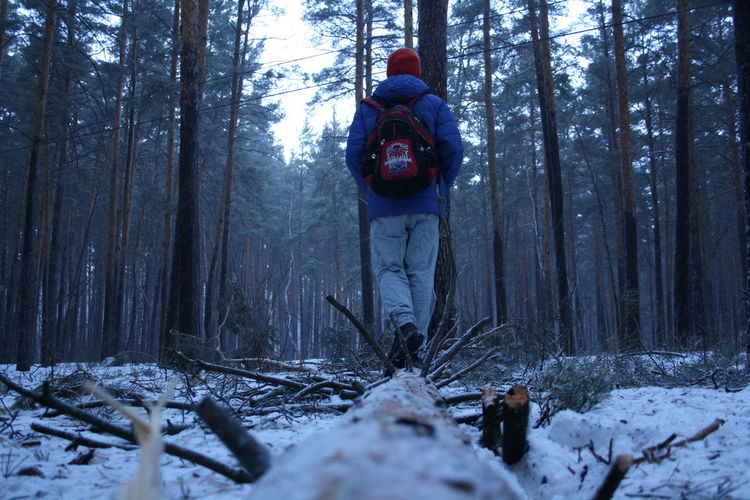 Rear View Of Hiker Walking In Snow Covered Forest