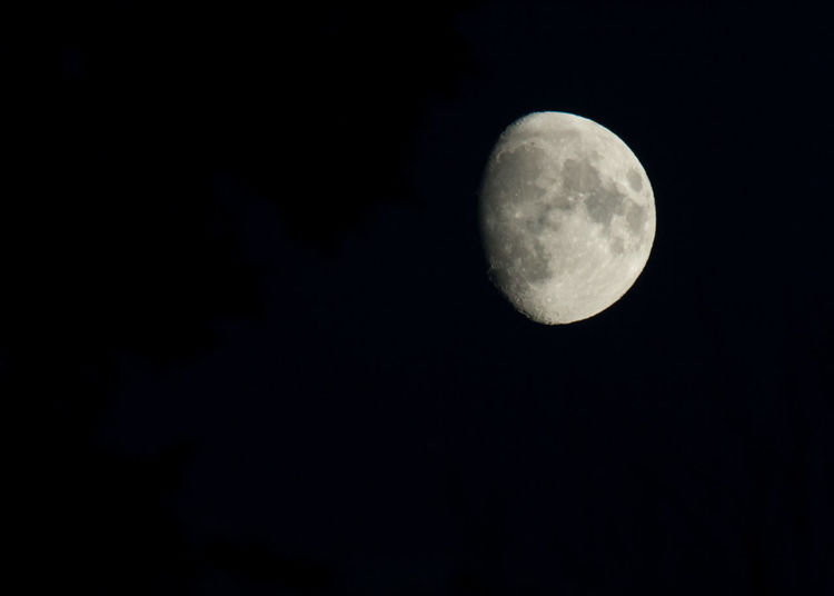 Astronomy Clear Sky Dark Half Moon Moon Moon Surface Nature Night No People Outdoors Sky Space