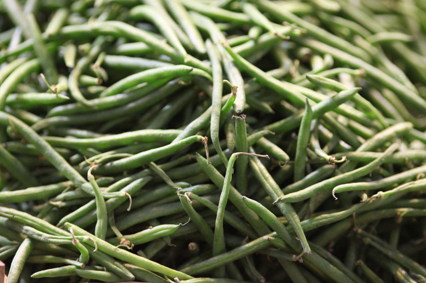 green beans Green Beans Abundance Backgrounds Close-up Day Food Food And Drink Freshness Full Frame Green Chili Pepper Green Color Healthy Eating Nature No People Outdoors Spice