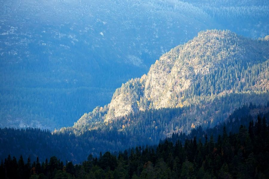 Landscape Mountain Shaddow Shades Summer ☀ Sunshine Telemark Tree