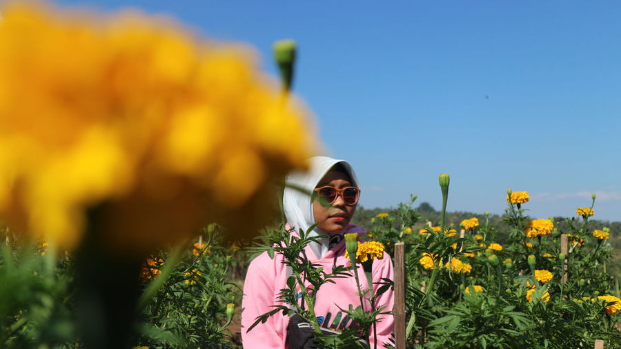 Young woman wearing sunglasses while standing amidst yellow flowers on field against blue sky