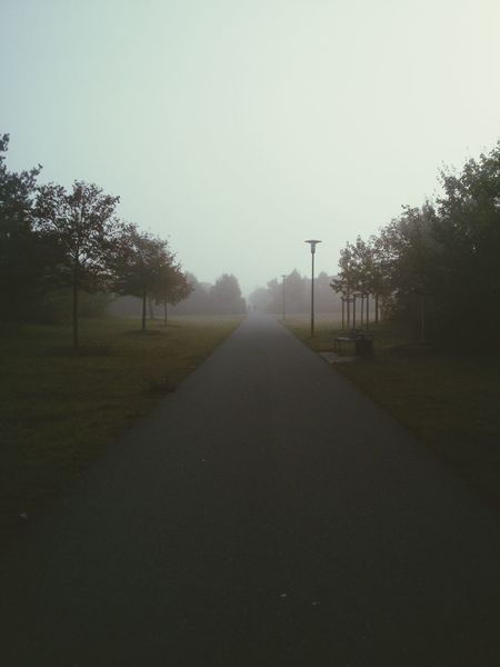 Tree The Way Forward Diminishing Perspective Tranquil Scene Nature Sky Foggy Outdoors Day Mist Empty Road Solitude Beauty In Nature Long Vanishing Point Remote Autumn Collection No People Erlangen Grassy Park - Man Made Space Fall Season