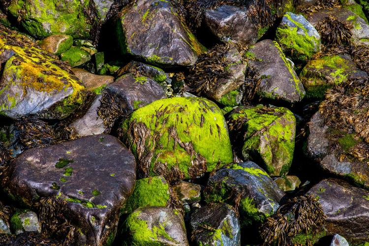 Full frame shot of stones in water