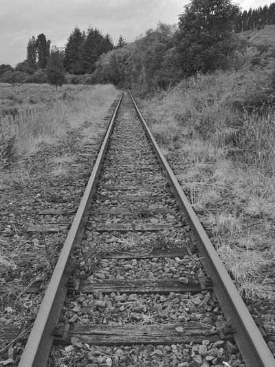Blackandwhite Forgotten Places  Disusedrailways Railroad Track Rail Transportation The Way Forward Transportation Railroad Tie Day Outdoors No People Nature