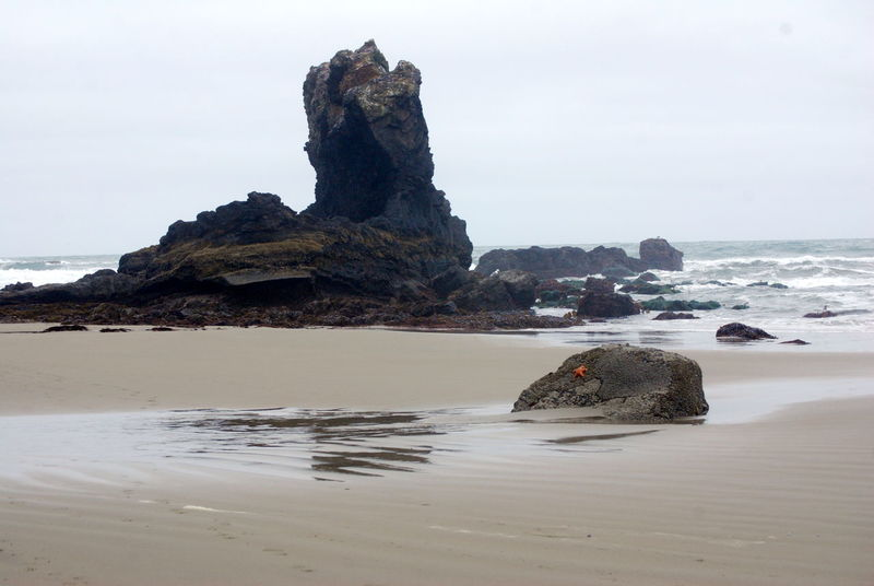 Natural Formation Ocean Oregon Outdoors Rock Sea And Sky Starfish At Beach