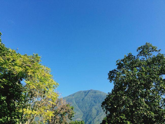 El Avila El Avila .Caracas Venezuela Forest Tranquility No People Mountain Range Outdoors Day Sky Blue Sky