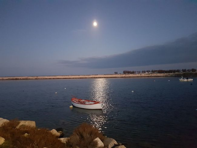 Italy Italia Mare Mare D'inverno Yallerspuglia Apuglia No Filter, No Edit, Just Photography S7flat Sea Beach Water Moon Nautical Vessel Outdoors Sky