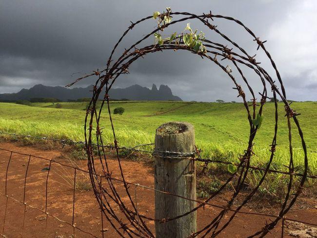 Anahola Paniolo Countryside, Kauai, Hawaii Hawaii Kauai Anahola