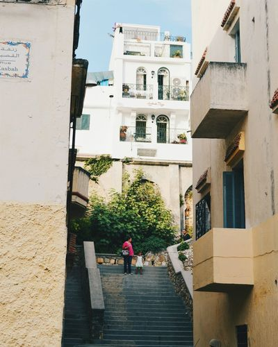 Hillside Narrow