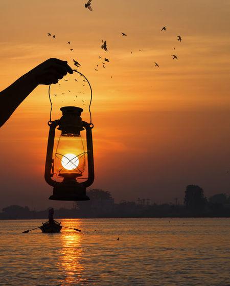 evening EyeEm Selects Bird Water Sunset Full Length Silhouette Reflection Fishing Flying Sky Flock Of Birds Fisherman Waterfront Flamingo Boat