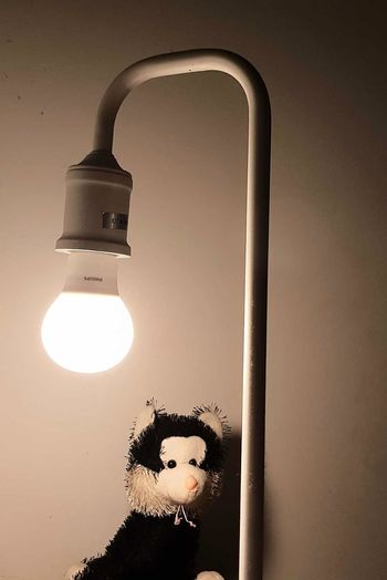 lamp and toy