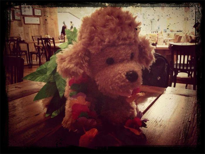 My Handmade Stuffed Toy