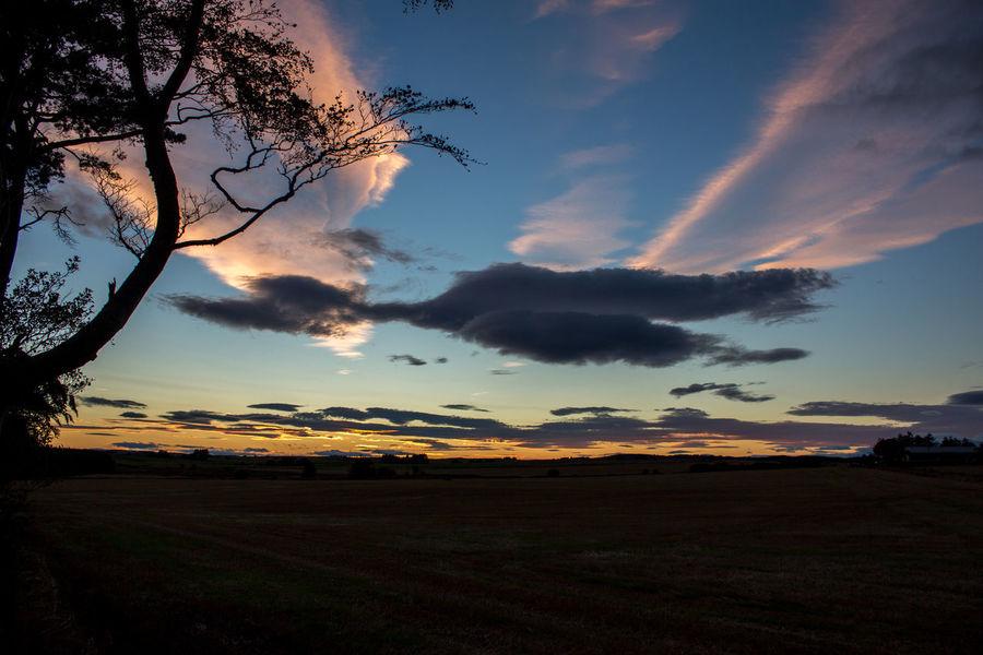 Entenwolke In Schottland