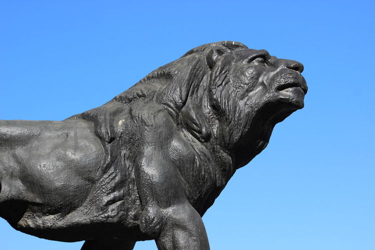 Art And Craft Black Lion Clear Sky Close-up Day Lion Low Angle View No People One Animal Outdoors Sculpture Statue