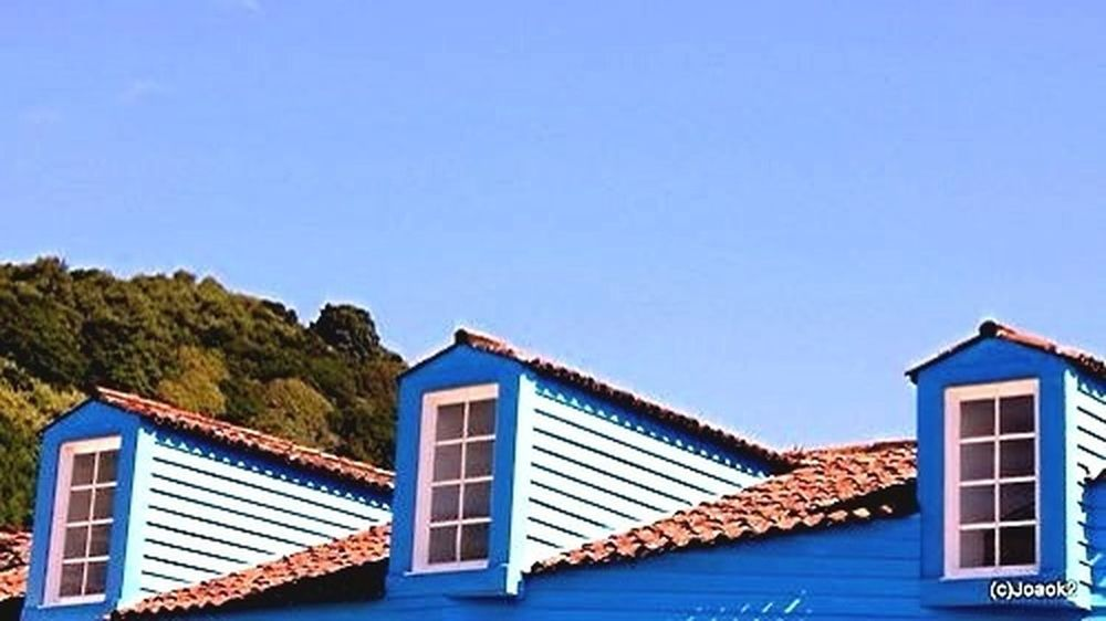 Windows Colors Colours Azores Eye4photography  Ilha Do Pico