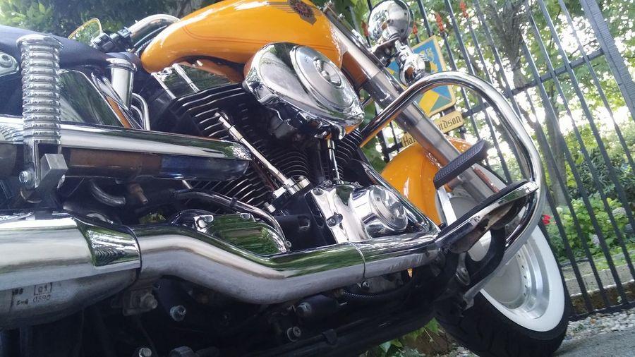 Transportation Harleydavidson Harley Davidson Harley4life Lifestyles Mode Of Transport No People