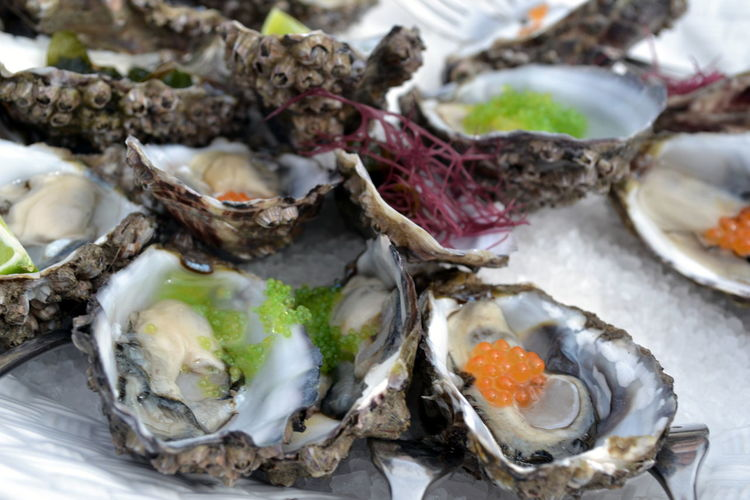Close-up of oysters on table
