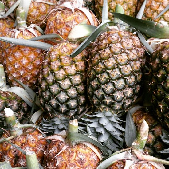 Fresh pineapples Food Freshness Food And Drink Healthy Eating Pineapple Fruit Close-up No People Market Outdoors Day