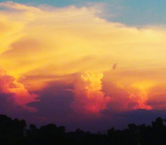 Dramatic Sky Sunset Red Outdoors No People Sky Nature Multi Colored Scenics Cloud - Sky Growth Beauty In Nature Nature