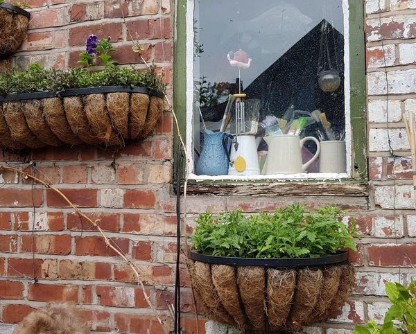 Building Decoration Plant Pot Window Vintage Uk