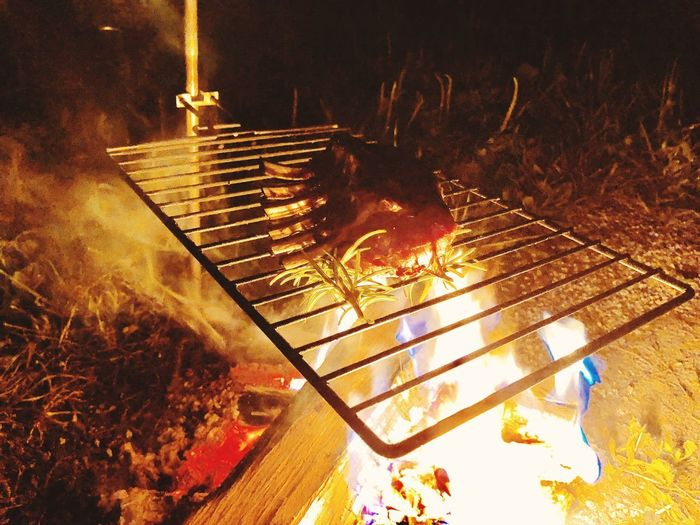 Campinglife Camping Lamb Spare Ribs Spareribs Barbecue Nature No People Plant Tree Illuminated Sunlight Outdoors Glowing