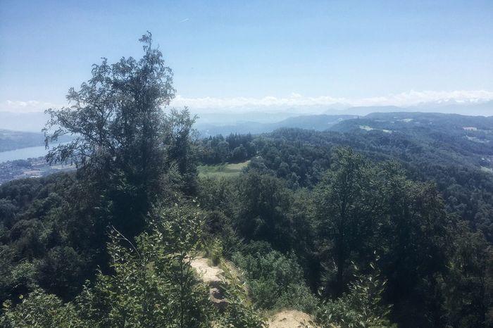 Daylight Outdoors Hiking Trail