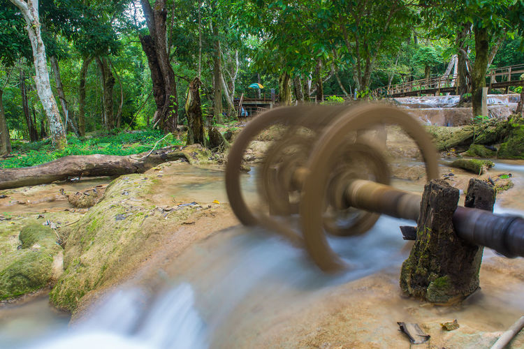 Tree Plant Day Motion Nature No People Blurred Motion Outdoors Water Land Metal Forest Selective Focus Focus On Background Connection Tree Trunk Growth Trunk Shape Flowing Flowing Water Wheel