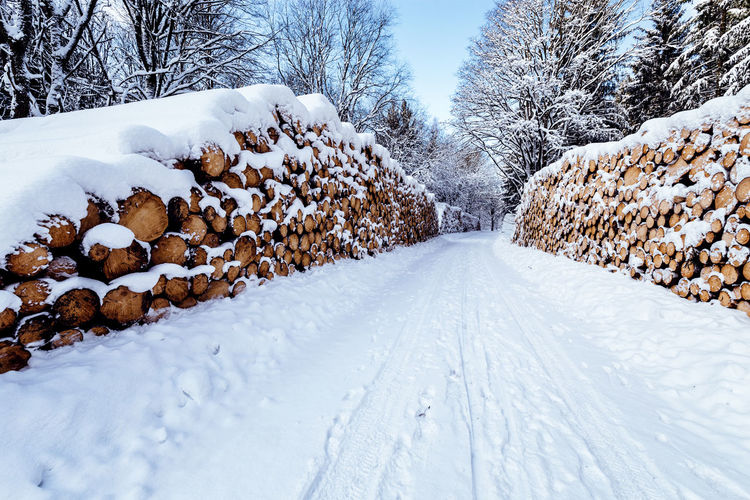 Snow Cold Temperature Winter Tree Covering Plant White Color Nature No People The Way Forward Direction Beauty In Nature Day Tranquility Tranquil Scene Scenics - Nature Road Frozen Transportation Diminishing Perspective Extreme Weather Snowcapped Mountain